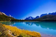 Sunwapta sjö, Jasper National Park i Alberta, Kanada Royaltyfri Foto
