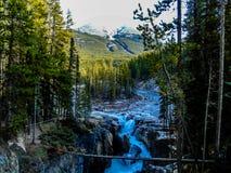 Sunwapta spadki, Jaspisowy park narodowy, Alberta, Kanada zdjęcie stock
