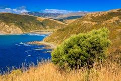 Suny-Landschaft mit dem Ozean und den grünen Hügeln Lizenzfreie Stockfotos