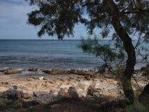Suny-Tagesfelsiger Strand stockfotos