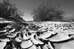 Suolo asciutto nel deserto Fotografia Stock Libera da Diritti