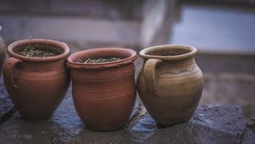 Suolo Clay Pot Photo della pianta verde fotografie stock libere da diritti