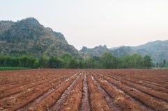 Suolo coltivato del campo del terreno coltivabile - paesaggio di agricoltura Immagini Stock