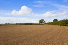 Suolo coltivato nella fine dell'estate Fotografia Stock Libera da Diritti