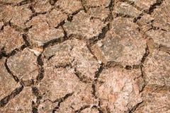 Suolo della crepa sul periodo di siccità Fotografia Stock