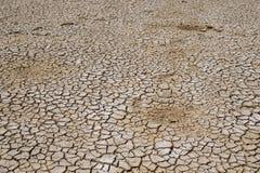 Suolo della crepa sul periodo di siccità, riscaldamento globale/fango secco incrinato/D Fotografia Stock Libera da Diritti