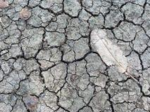 Suolo di siccità Immagini Stock