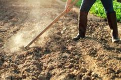 suolo di vangata dell'agricoltore per la piantatura della verdura immagine stock libera da diritti