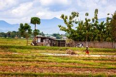 Suolo pronto agricoltore tailandese per piantare Immagine Stock Libera da Diritti