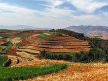 Suolo rosso di Dongchuan (Hongtudi), il Yunnan, Cina Fotografia Stock