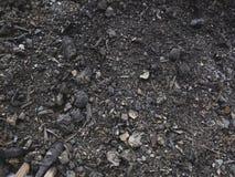 Suolo, sporcizia coltivata, terra, terra, fondo Immagini Stock