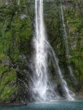 Suoni di Milford della cascata Fotografia Stock Libera da Diritti