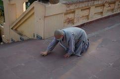 Suora Praying Fotografie Stock