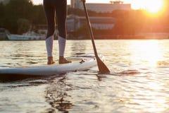 SUP la silueta del embarque de la paleta de la chica joven en la puesta del sol Imagen de archivo libre de regalías