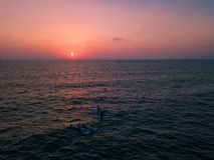 SUP os surfistas que olham o por do sol no oceano imagens de stock royalty free