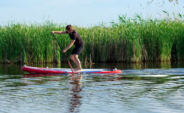 SUP stand up man with a paddle 04. SUP stand up athletic man with a paddle on the red board Royalty Free Stock Photography