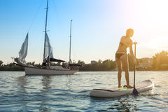 SUP Stand up paddle board woman paddle boarding13 royalty free stock photos