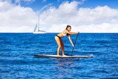 SUP Stand up Surf girl with paddle Stock Image