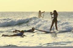 SUP surfinf vrouw Royalty-vrije Stock Afbeelding