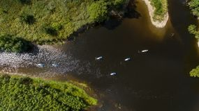 SUP unidentifiable people paddle boarding on a calm river during summer royalty free stock images