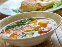 Supa taraneasca. Romanian vegetable soup with noodles Royalty Free Stock Photos