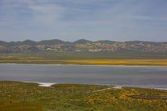 Super Bloom Lake stock photo