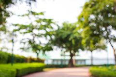 The super blurry background of garden with little light of sun or blur park view or background or blur outdoor picture Royalty Free Stock Images
