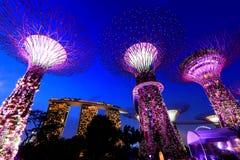 Super Bomen bij de Tuinen van Singapore door de Baai Royalty-vrije Stock Afbeelding