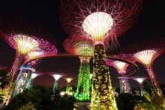 Super Bomen bij de Tuinen van Singapore door de Baai Stock Afbeeldingen