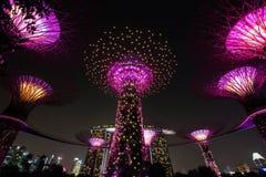 Super boomgroef bij Tuinen door de Baai Royalty-vrije Stock Foto