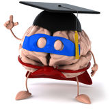 Super brain Royalty Free Stock Photography