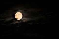 Super bright full moon Royalty Free Stock Images