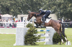 Super Cillious Jumping Fence #5 Stock Photography