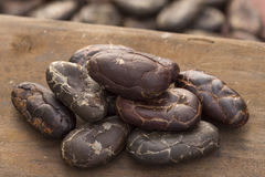 Super closeup cacao cocoa beans Royalty Free Stock Images