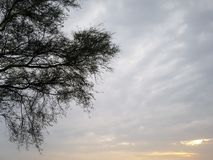 Super de zomer de zonsondergang sceen royalty-vrije stock foto