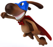 Super dog Royalty Free Stock Photos