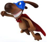 Super dog Royalty Free Stock Photos