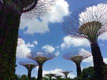 Super drzewa, ogródy zatoką Zdjęcia Royalty Free