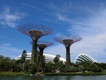 Super drzewa z chmur kopułami i kwiatami Obraz Royalty Free