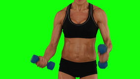 Super fit woman lifting dumbbells in black sports bra and shorts. On green screen background stock video footage