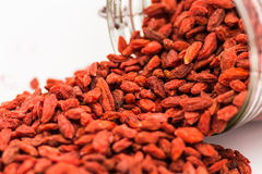 Super-food Goji Berries Royalty Free Stock Photos