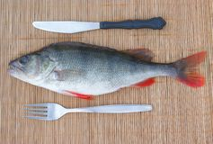 Super-fresh fish with knife and fork Stock Photos