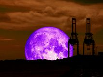 Super full purple moon back mountain and silhouette crain at sea. Port, Elements of this image furnished by NASA Royalty Free Stock Photography