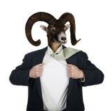 Super héroe con la cabeza de una cabra Imágenes de archivo libres de regalías