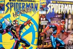 Super héros de bandes dessinées de merveille de Spider-Man image libre de droits