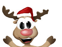 Super Happy Christmas Reindeer Royalty Free Stock Photos