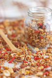 Super Healthy Homemade Granola. Make your own granola for breakfast or just snacking. Good way to start your day Royalty Free Stock Photos