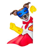 Super hero dog. With  red cape and a  blue mask beside a blank banner Stock Photos