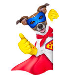 Super hero dog. With  red cape and a  blue mask beside a blank banner Royalty Free Stock Image
