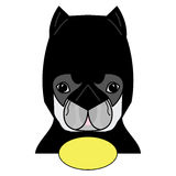 Super hero symbol  as  a French bulldog  character in black, yellow and gray Stock Images
